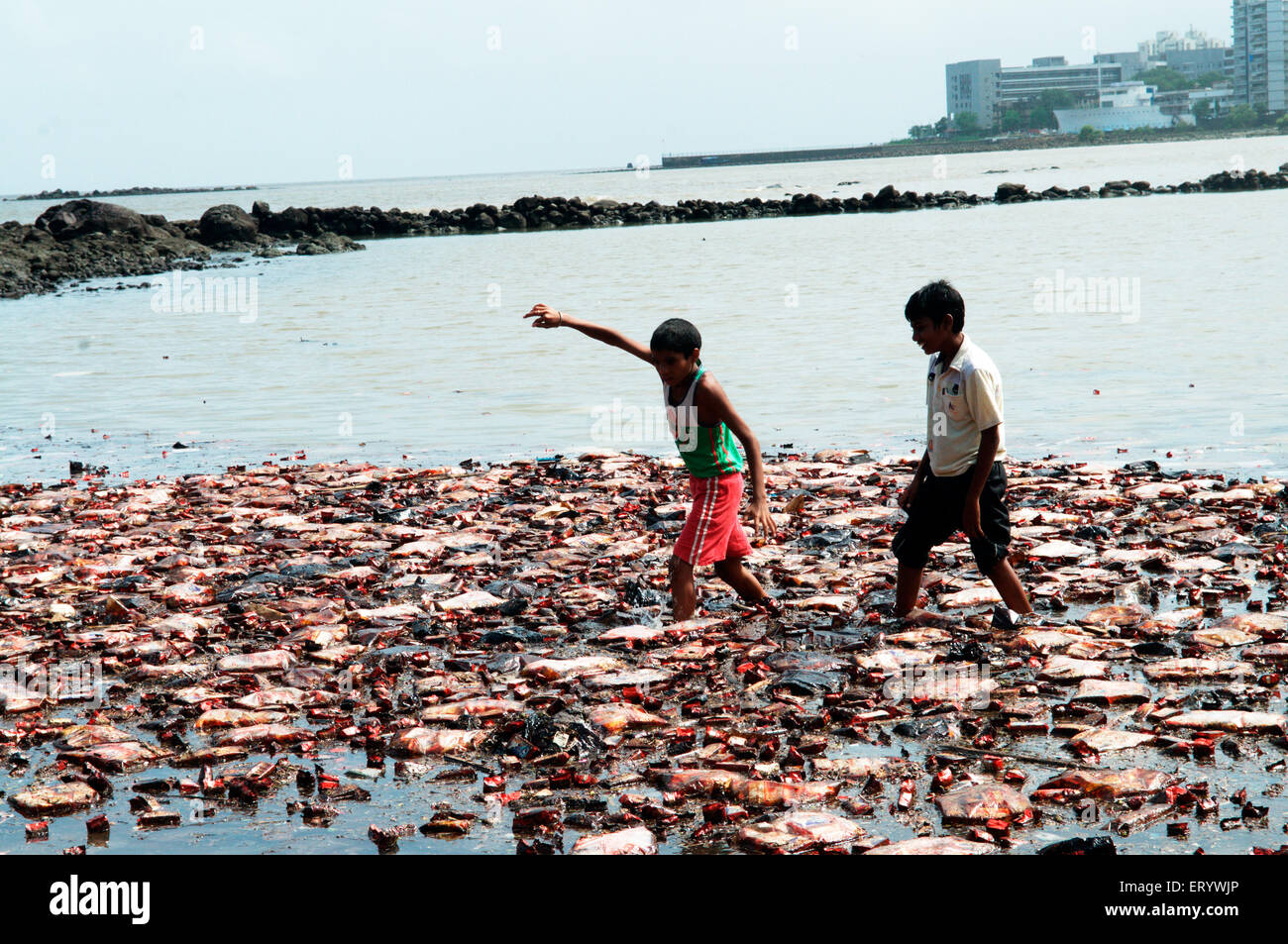 Boys searching biscuit packets from oil soaked  due to container ship chitra colliding in sea Bombay Mumbai - Stock Image