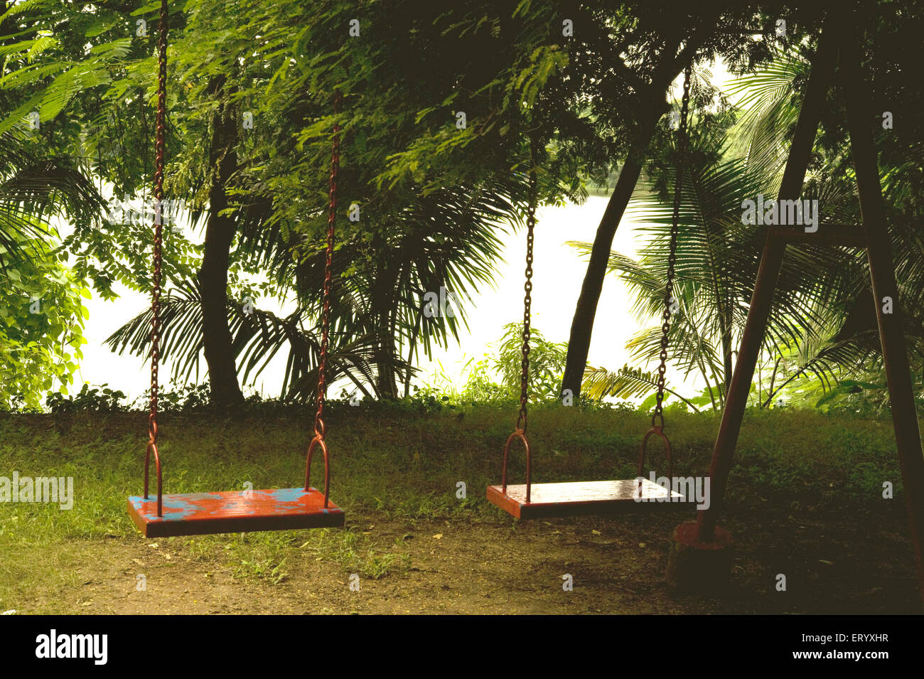 Two swings in the garden ; Kolkata Calcutta ; West Bengal ; India ...