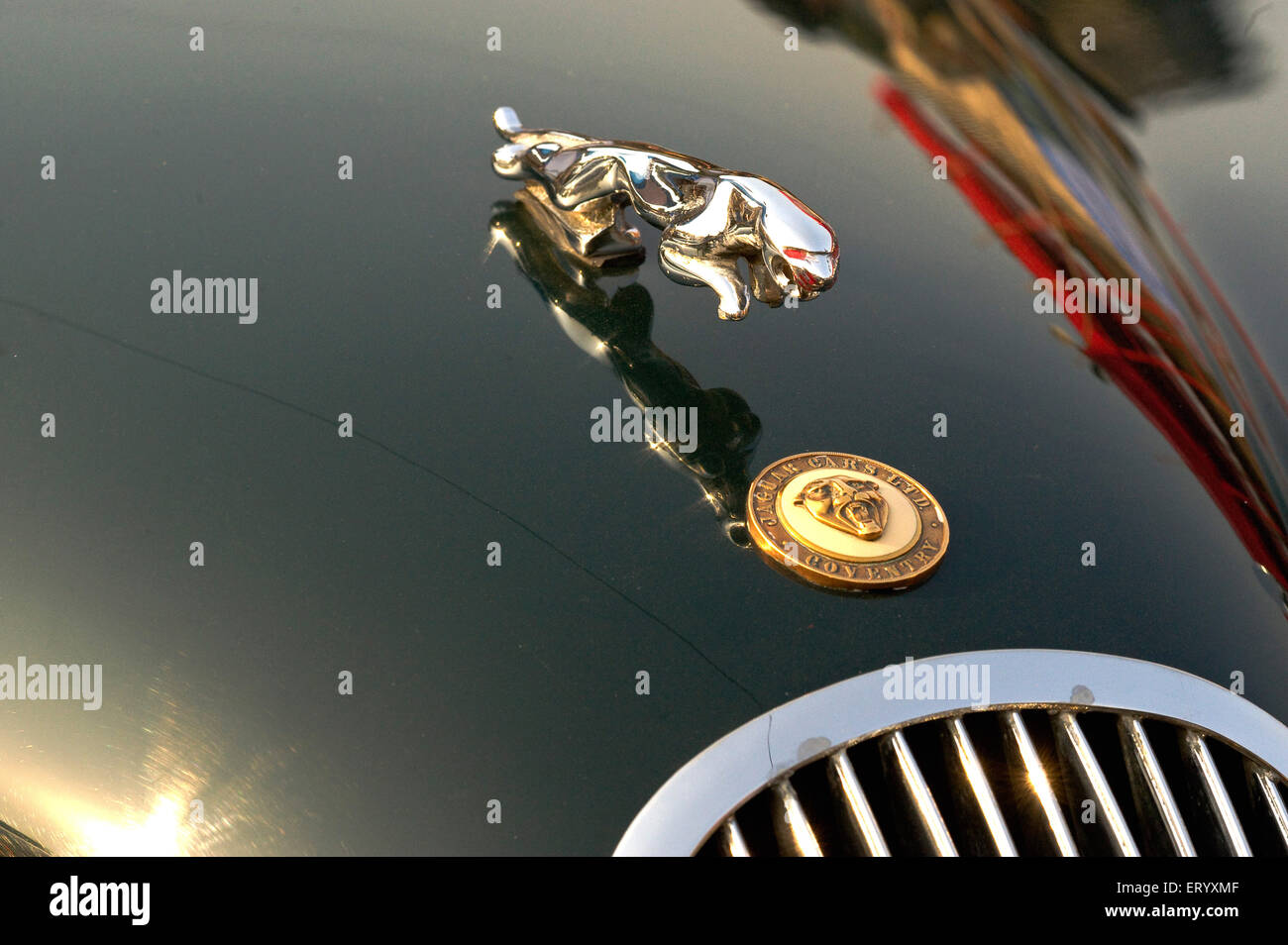 Jaguar Logo Stock Photos Jaguar Logo Stock Images Alamy