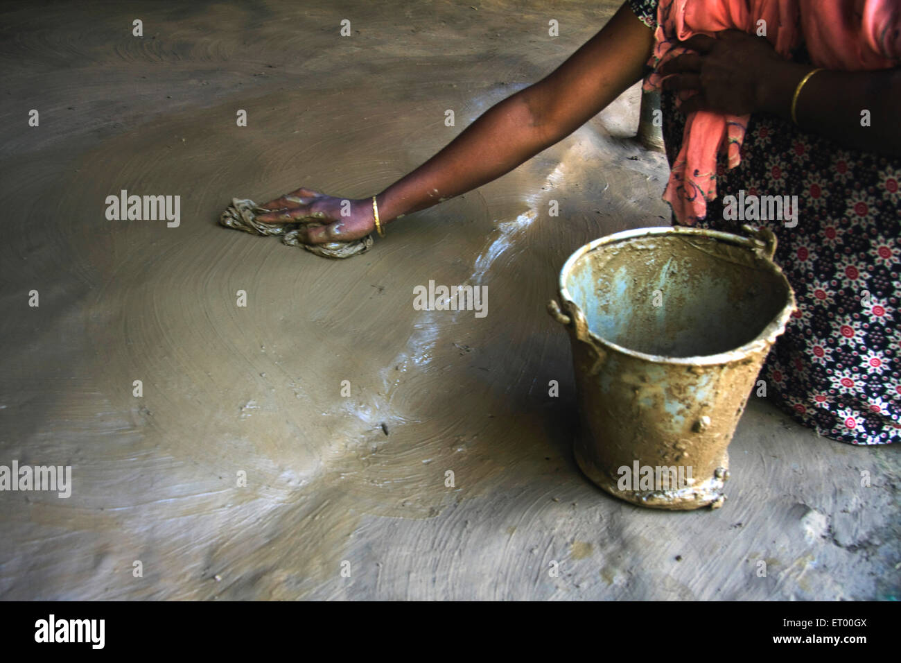 Woman Cleaning Floor Using Cow Dung Assam India Stock Photo