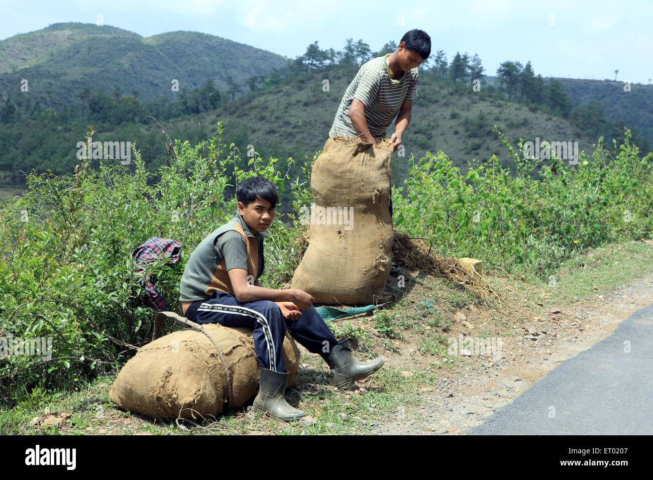 Tribal boys with their farm yields on a road side ; Shillong ; Meghalaya ; India NOMR Stock Photo