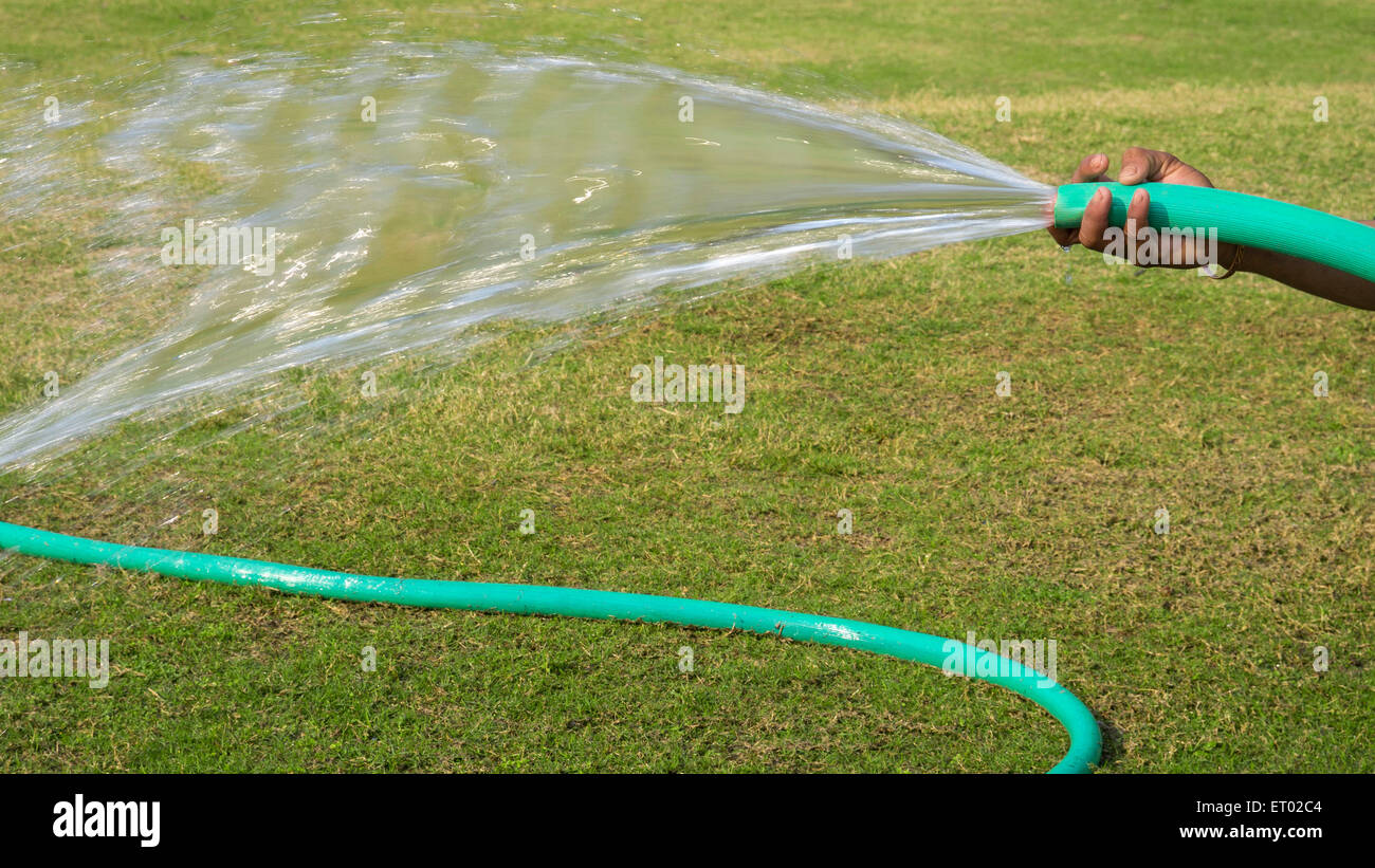 watering of lawn by Garden Hose India Asia - Stock Image