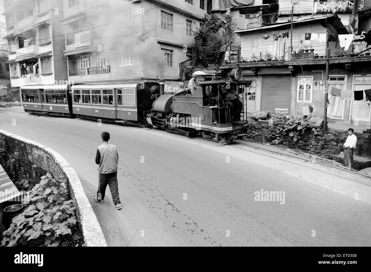 Toy train of Darjeeling Himalayan railway , West Bengal India , 2011 - Stock Image