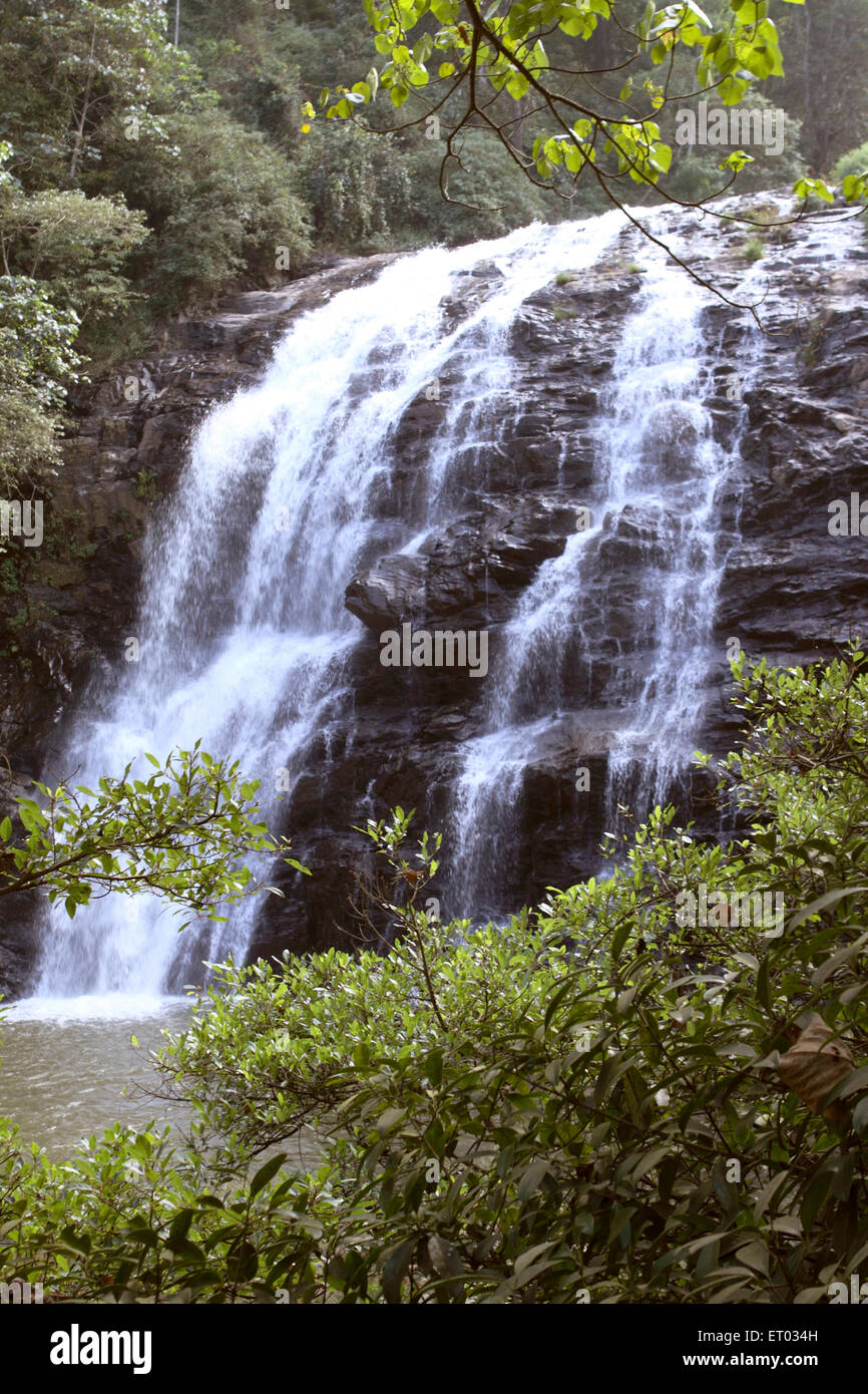 Abbey falls ; Madikeri ; Coorg ; Karnataka ; India 24 December 2008 - Stock Image