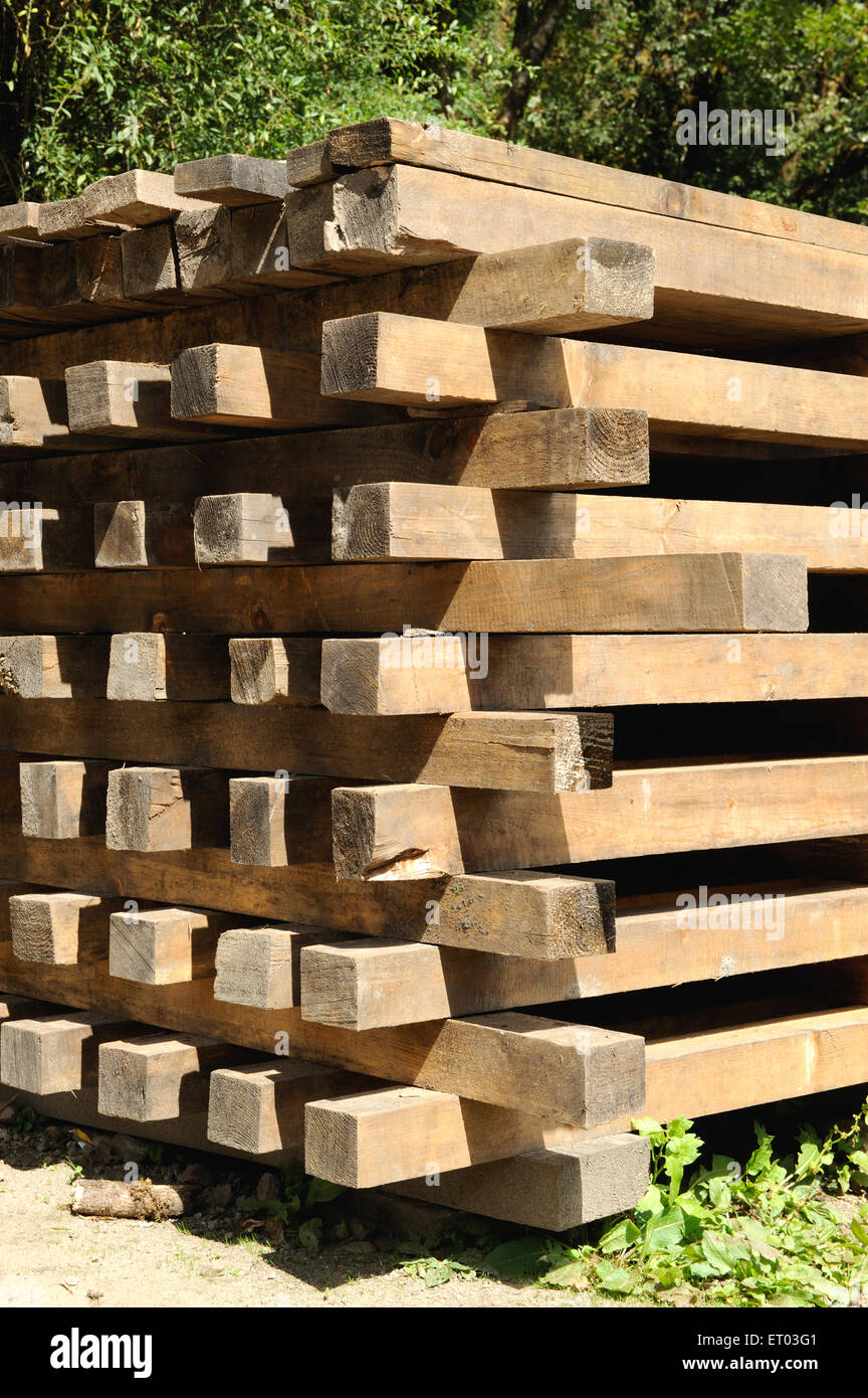 Stack of wooden logs ; Thanchowk ; Nepal - Stock Image