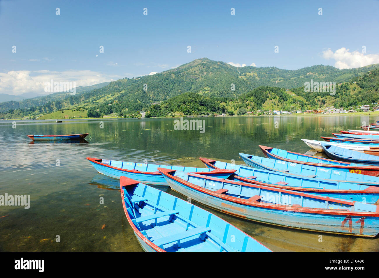 Boats at lake phewa ; Pokhara ; Nepal - Stock Image