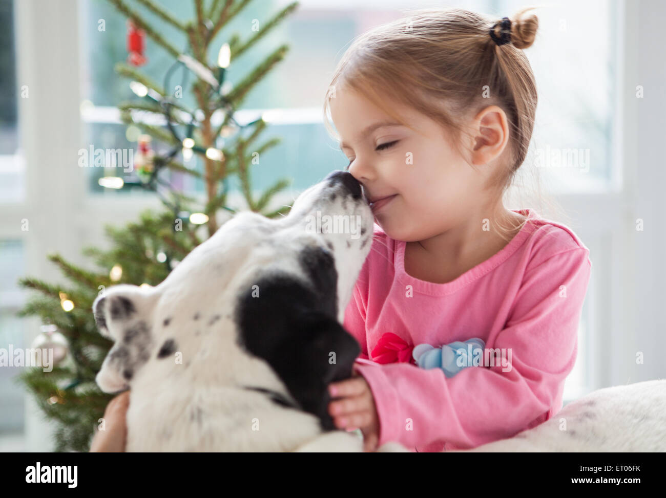 Dog licking girl's face - Stock Image