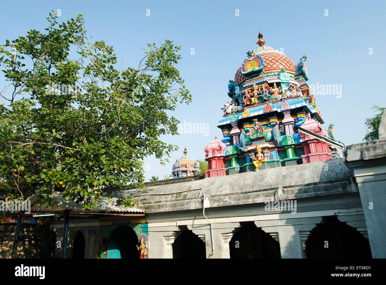 Kanjanur shiva's temple ; Shivastalam is associated with Sukran Venus  ; Thanjavur ; Tamil Nadu ; India - Stock Image