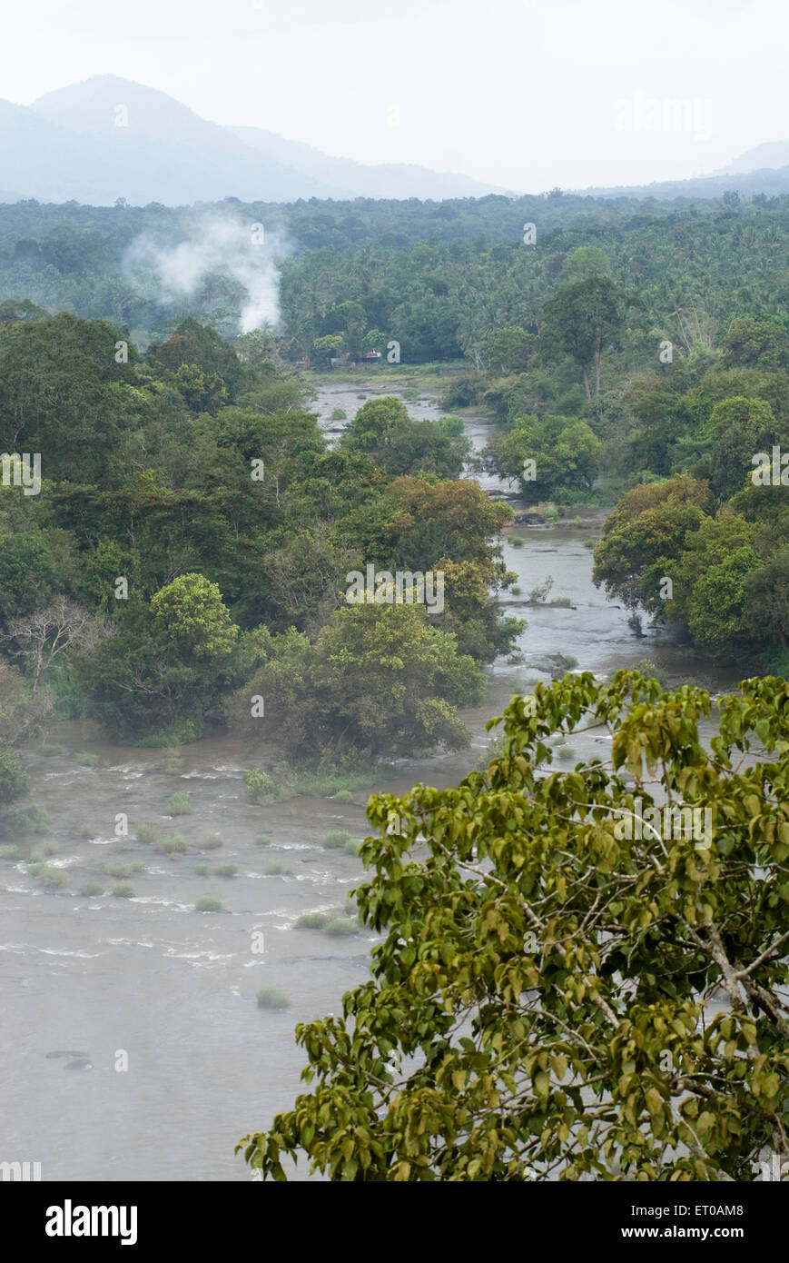 Kerala Forest Stock Photos  U0026 Kerala Forest Stock Images