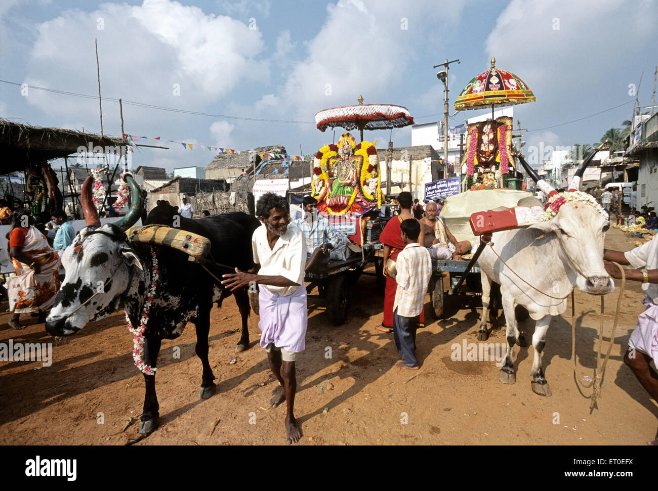Masi magma festival at vaithi in Pondicherry ; Tamil Nadu ; India NOMR - Stock Image