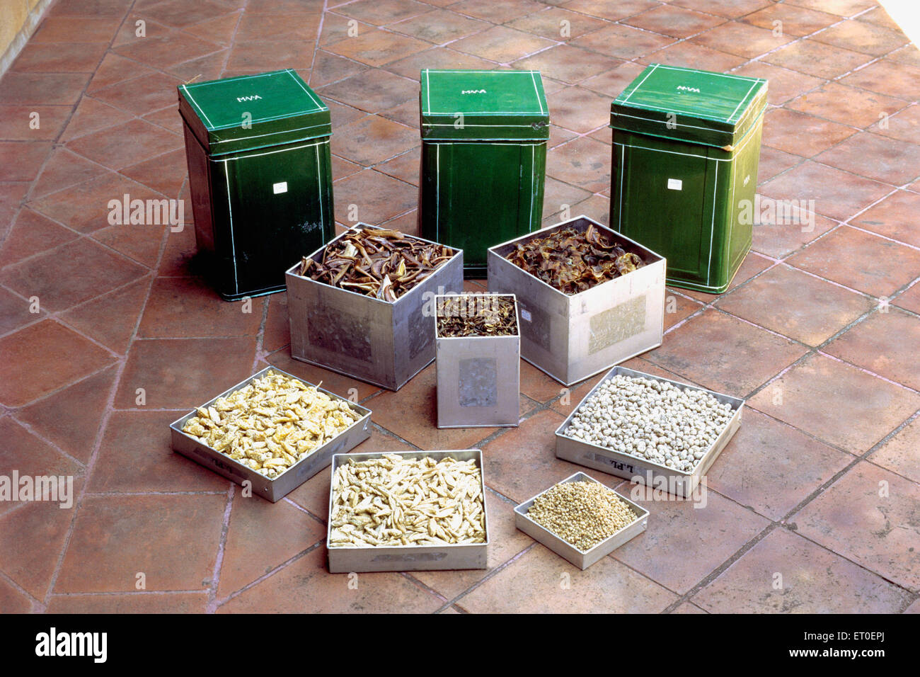 Special zinc tins with several dried items typically stored in them like mangoes slice brinjal chillies etc - Stock Image