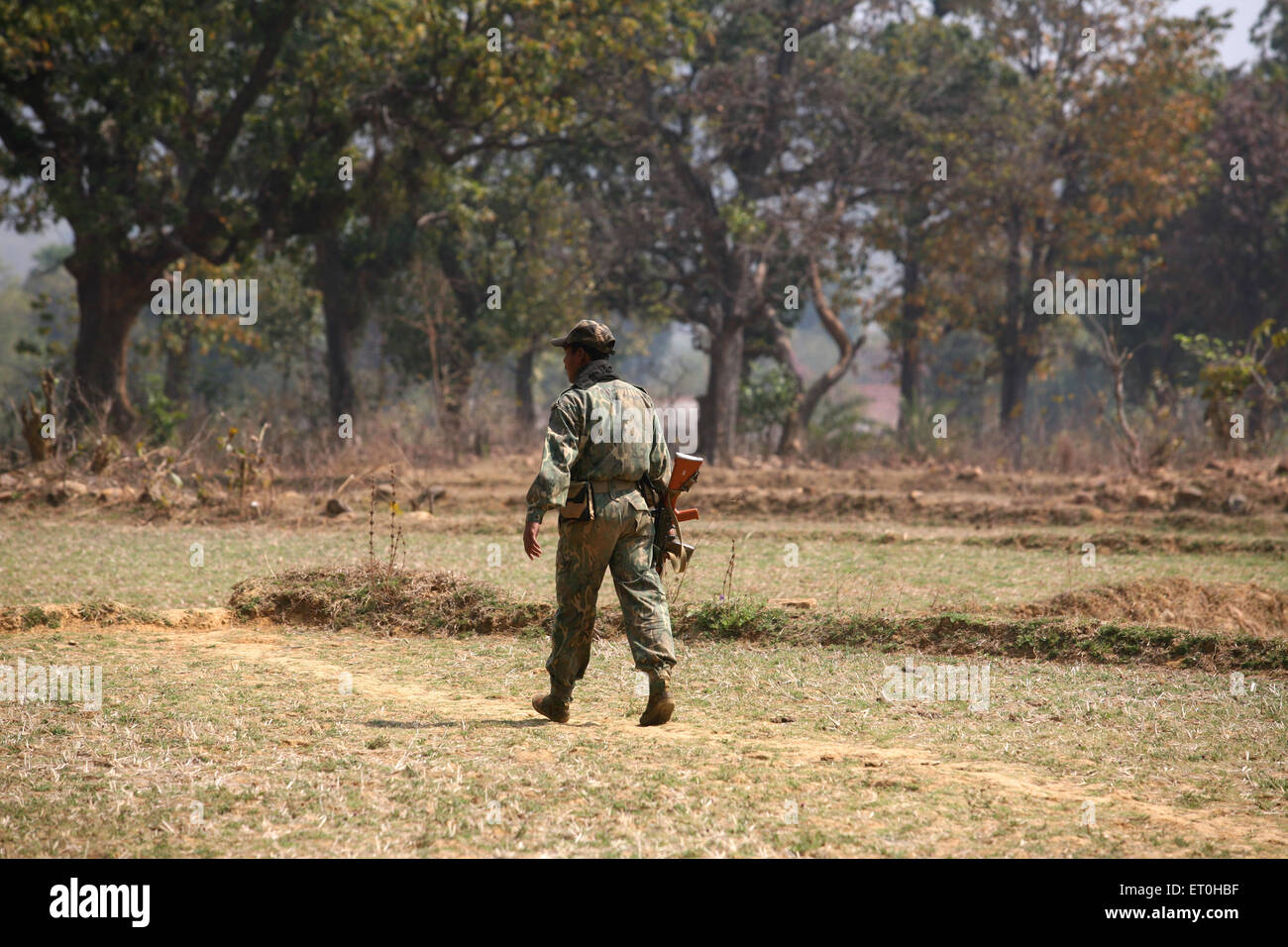 Central Reserve Police Force CRPF soldier with gun hunt for naxalites in forest of Jharkhand ; India - Stock Image