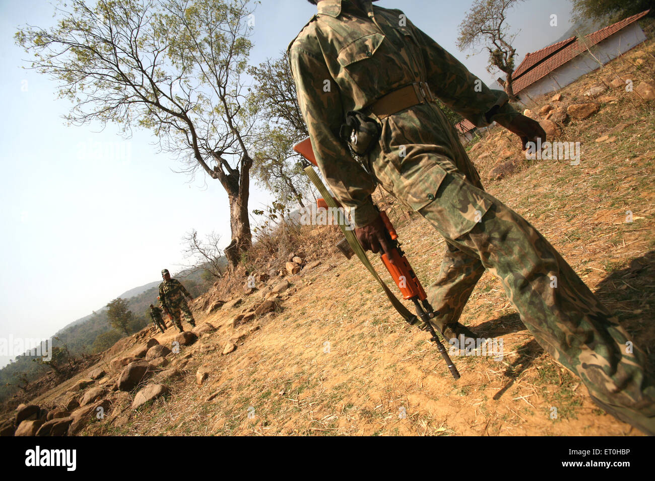 Central Reserve Police Force CRPF soldiers with gun hunt for naxalites in forest of Jharkhand ; India - Stock Image