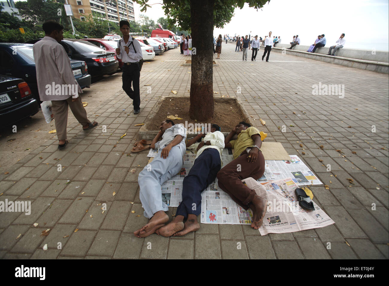 Three persons sleeping under the tree at the Marine Drive ; Bombay Mumbai ; Maharashtra ; India - Stock Image