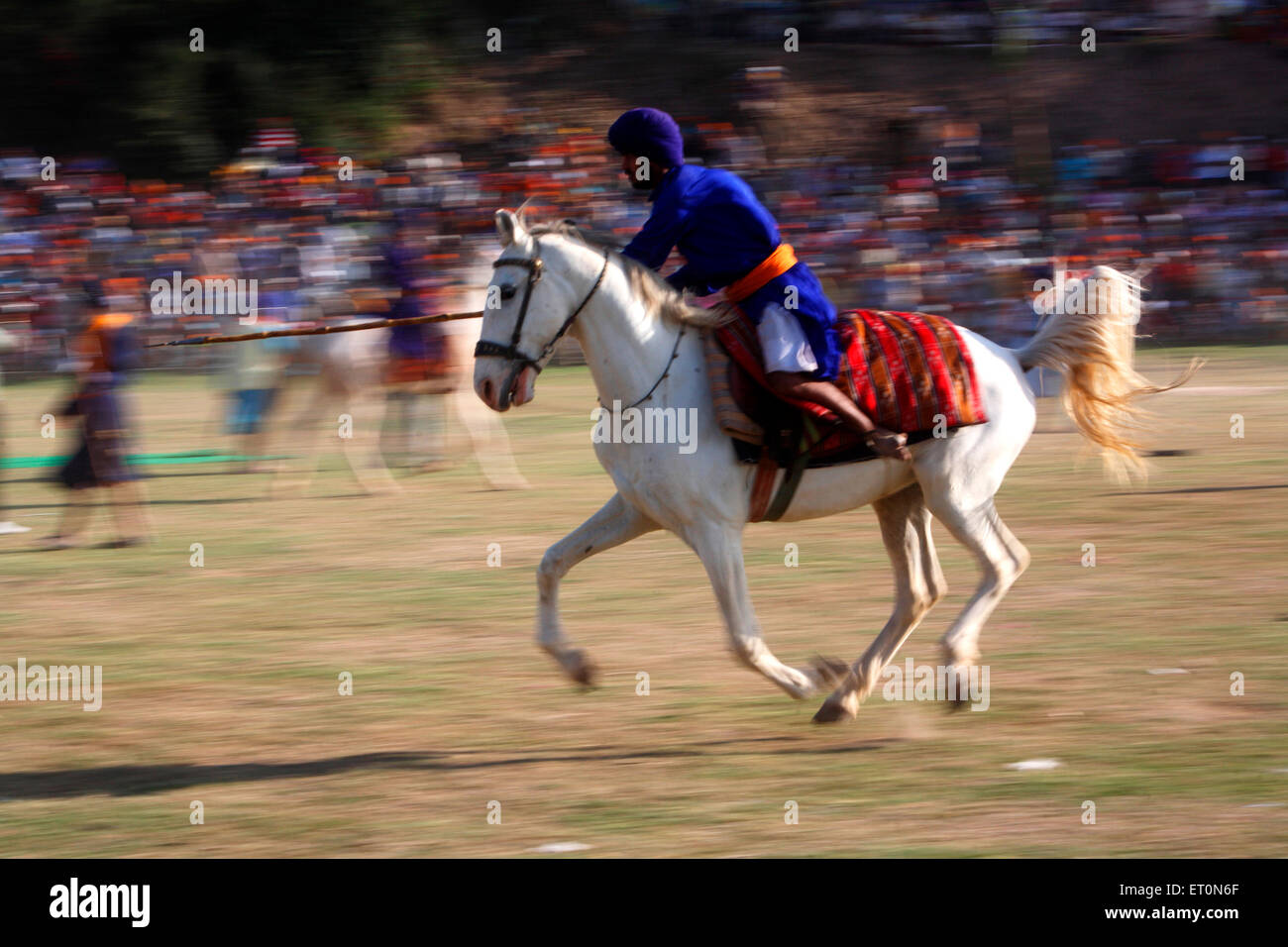 Nihang or Sikh warrior carrying spear performing stunts riding on horse during  Hola Mohalla festival at Anandpur - Stock Image