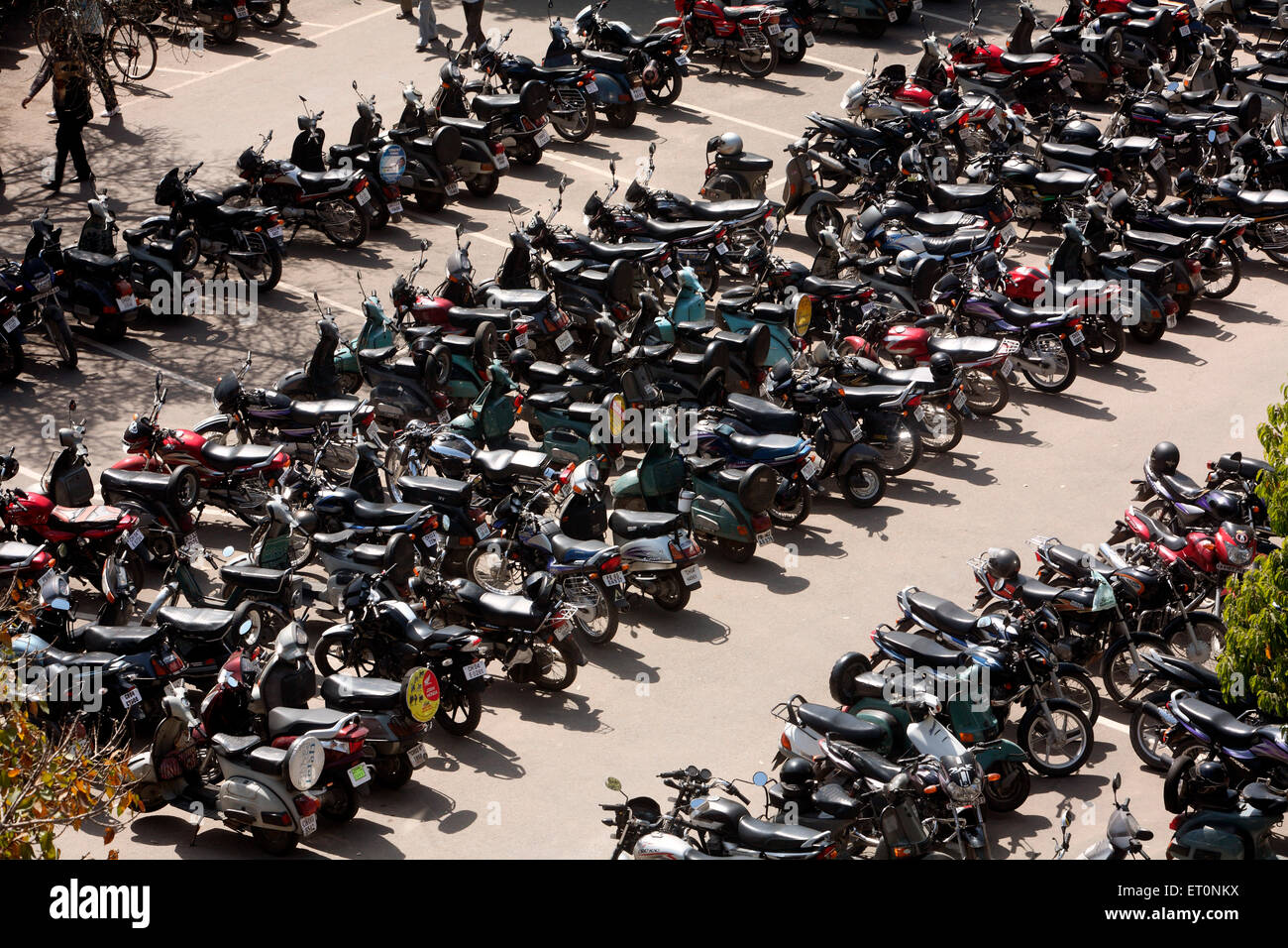 Two wheelers parked at high court building area of Chandigarh  ; Union Territory  ; India Stock Photo