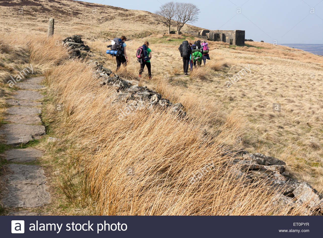 Group of walkers on the Pennine Way approaching Top Withens near Haworth West Yorkshire England UK - Stock Image