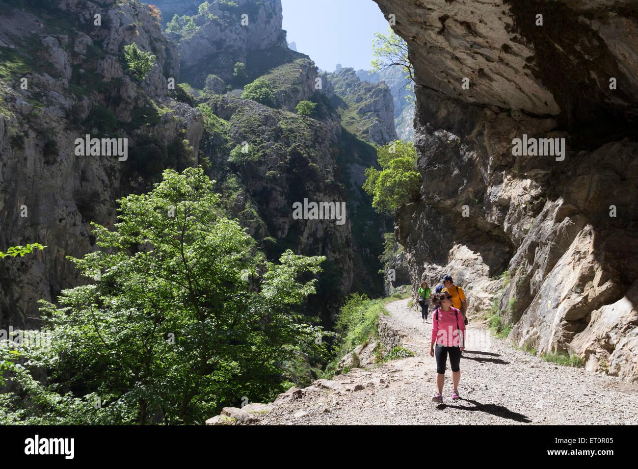 Walkers in the Cares Gorge Picos De Europa Cordillera Cantabria Spain - Stock Image