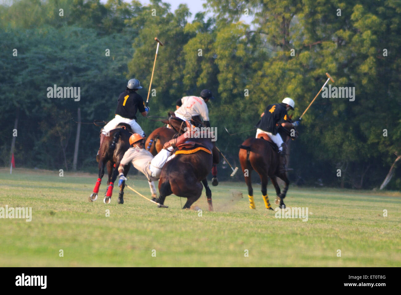 Polo match ; Jodhpur ; Rajasthan ; India - Stock Image