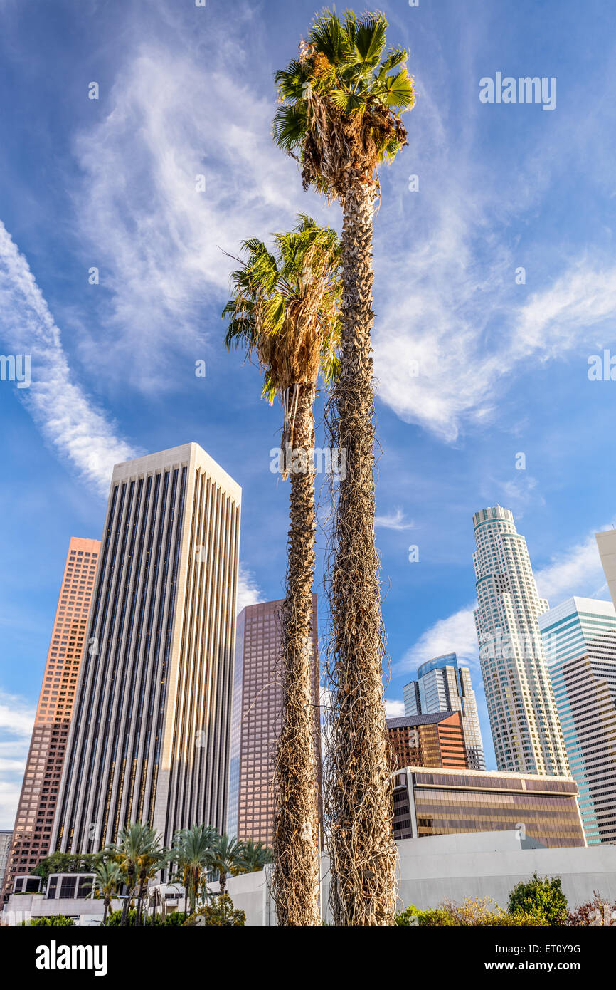 Los Angeles, California, USA palm trees and buildings. - Stock Image
