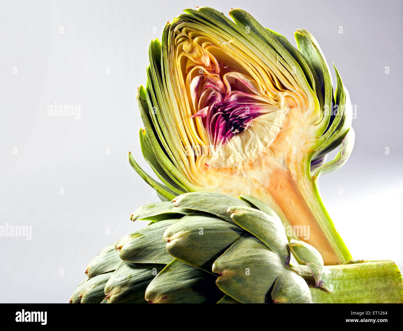 Globe artichoke cut in two, on neutral background. Stock Photo
