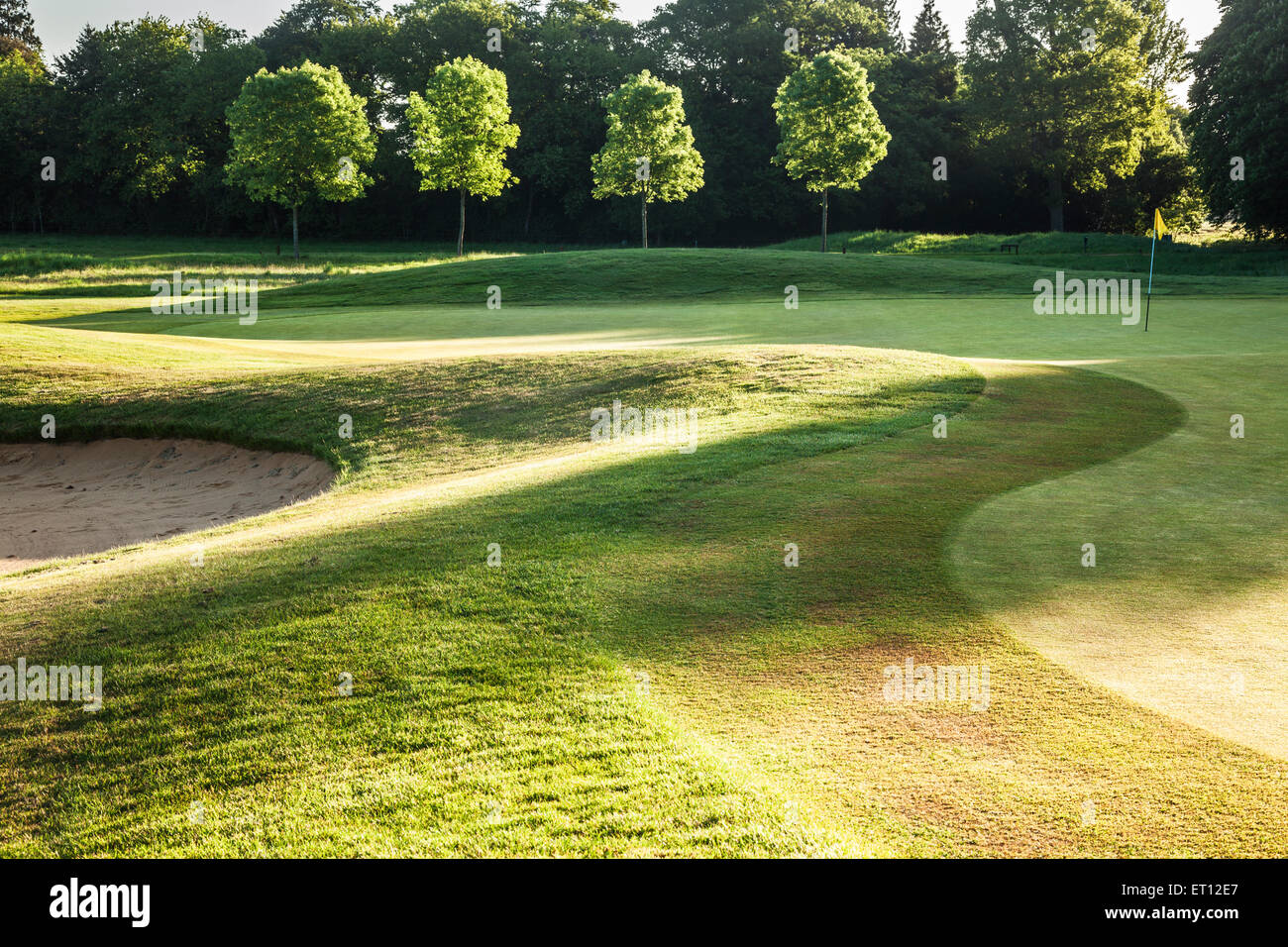 A typical golf course in early morning sunshine. - Stock Image