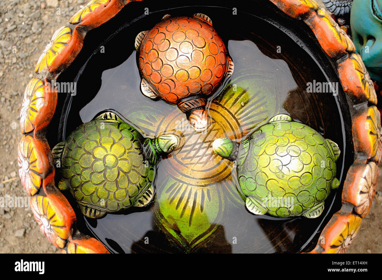Tortoises in water pot ; India - Stock Image