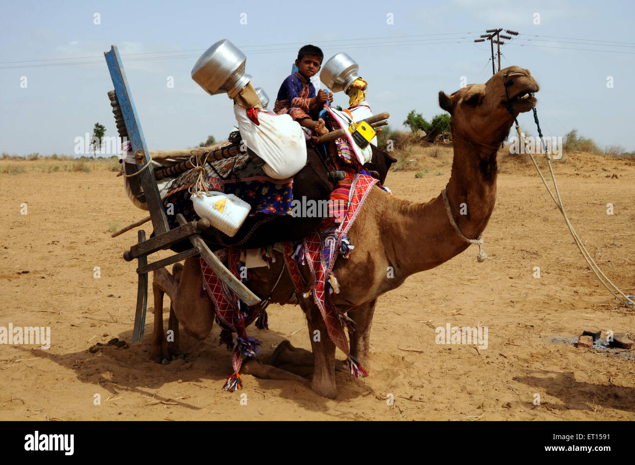 Camel carrying household thing and gypsy boy ; Kutch ; Gujarat ; India - Stock Image