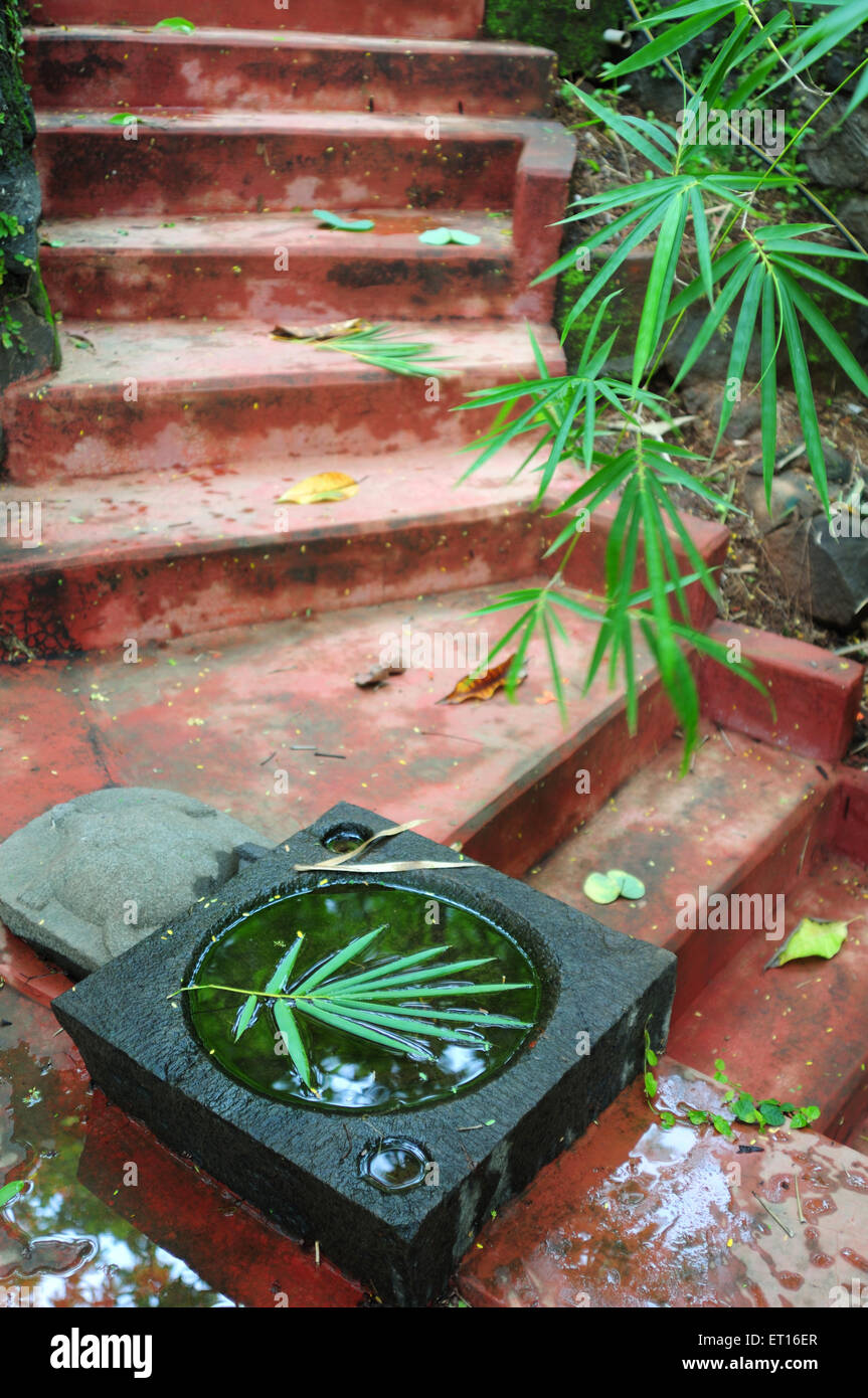 Floating leaf in monolithic water bowl at stair - Stock Image