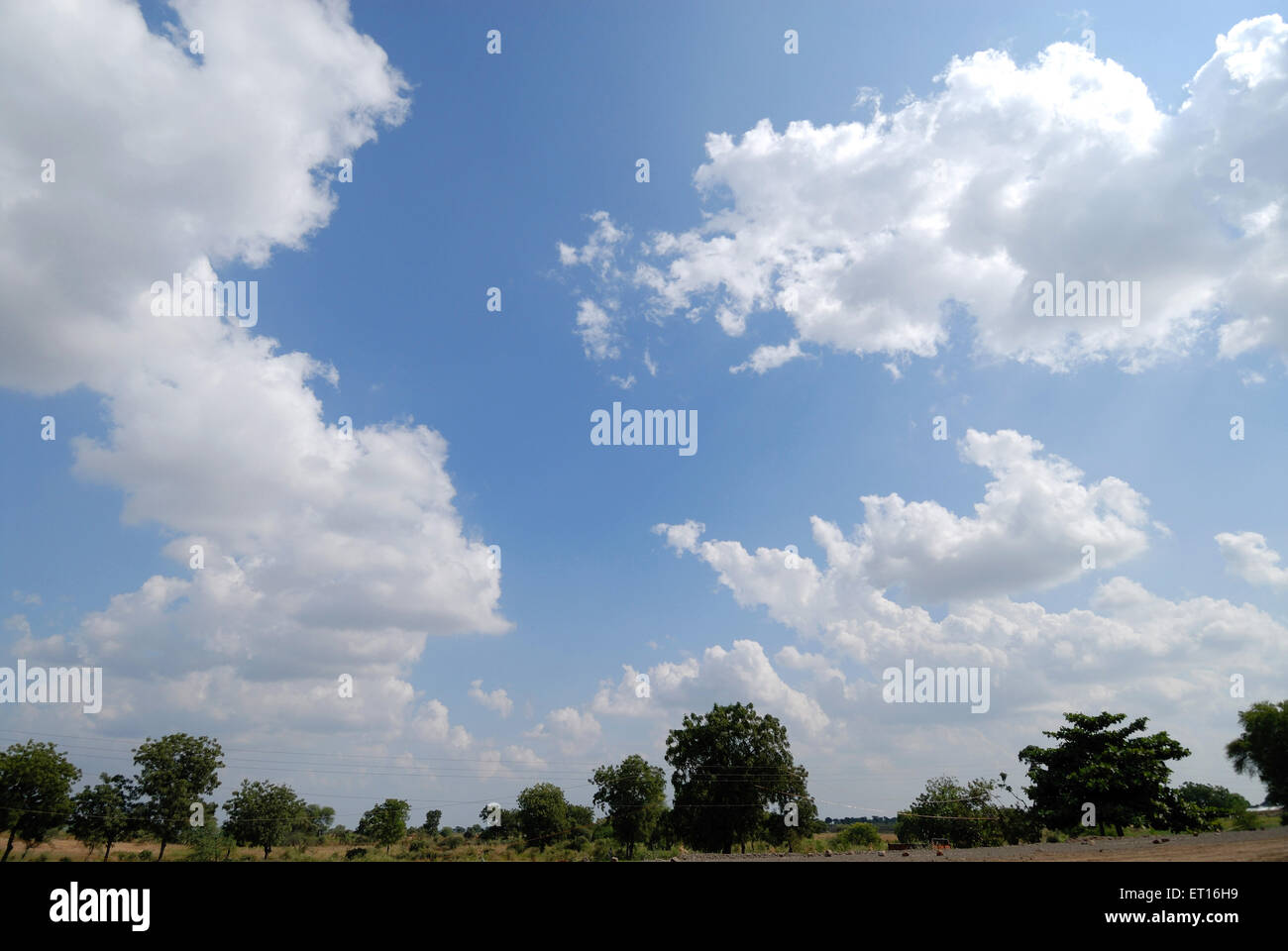 Summer white clouds on blue sky and trees landscape - Stock Image