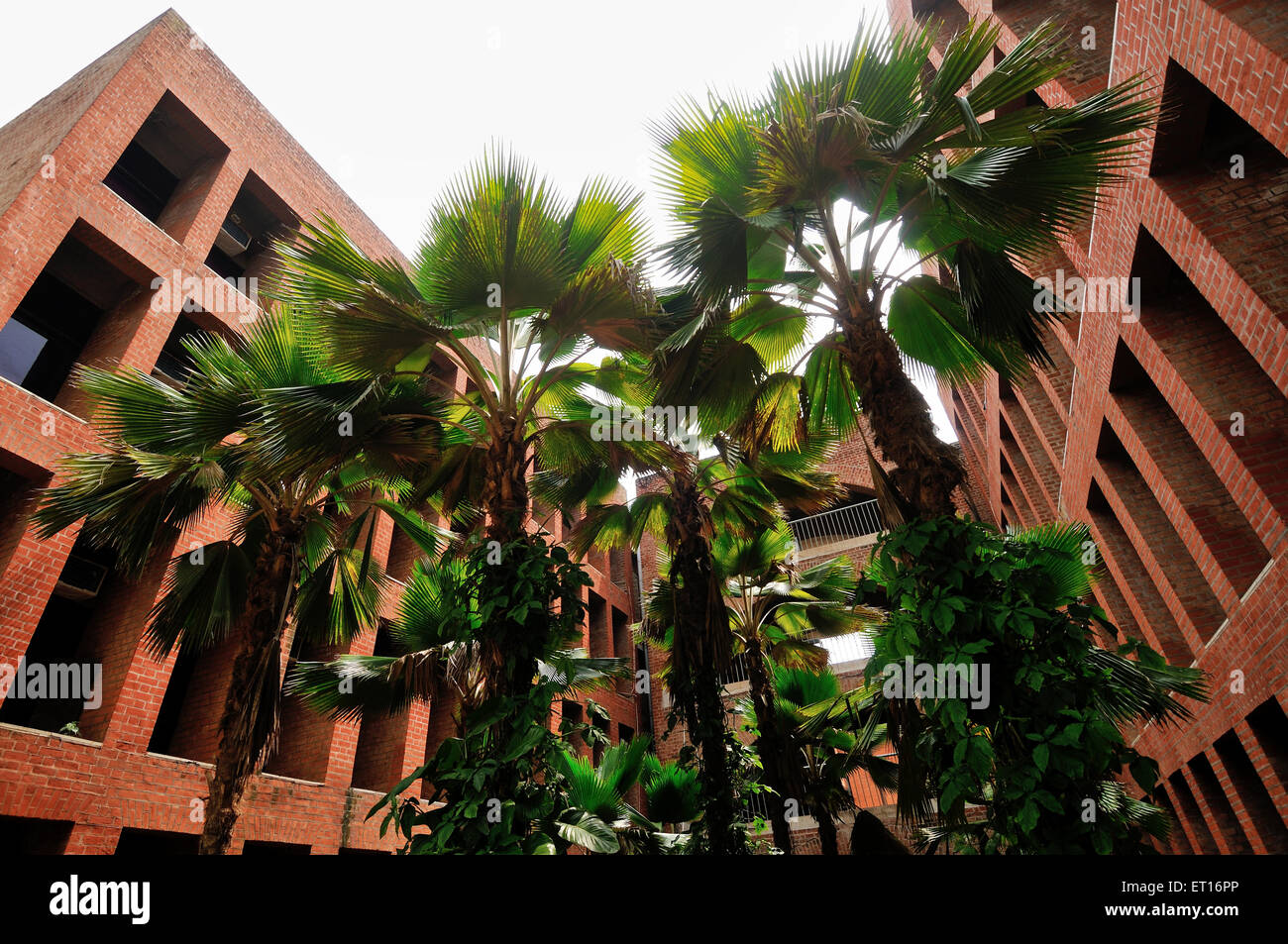 Indian Institute of Management Ahmedabad Gujarat India Asia - Stock Image