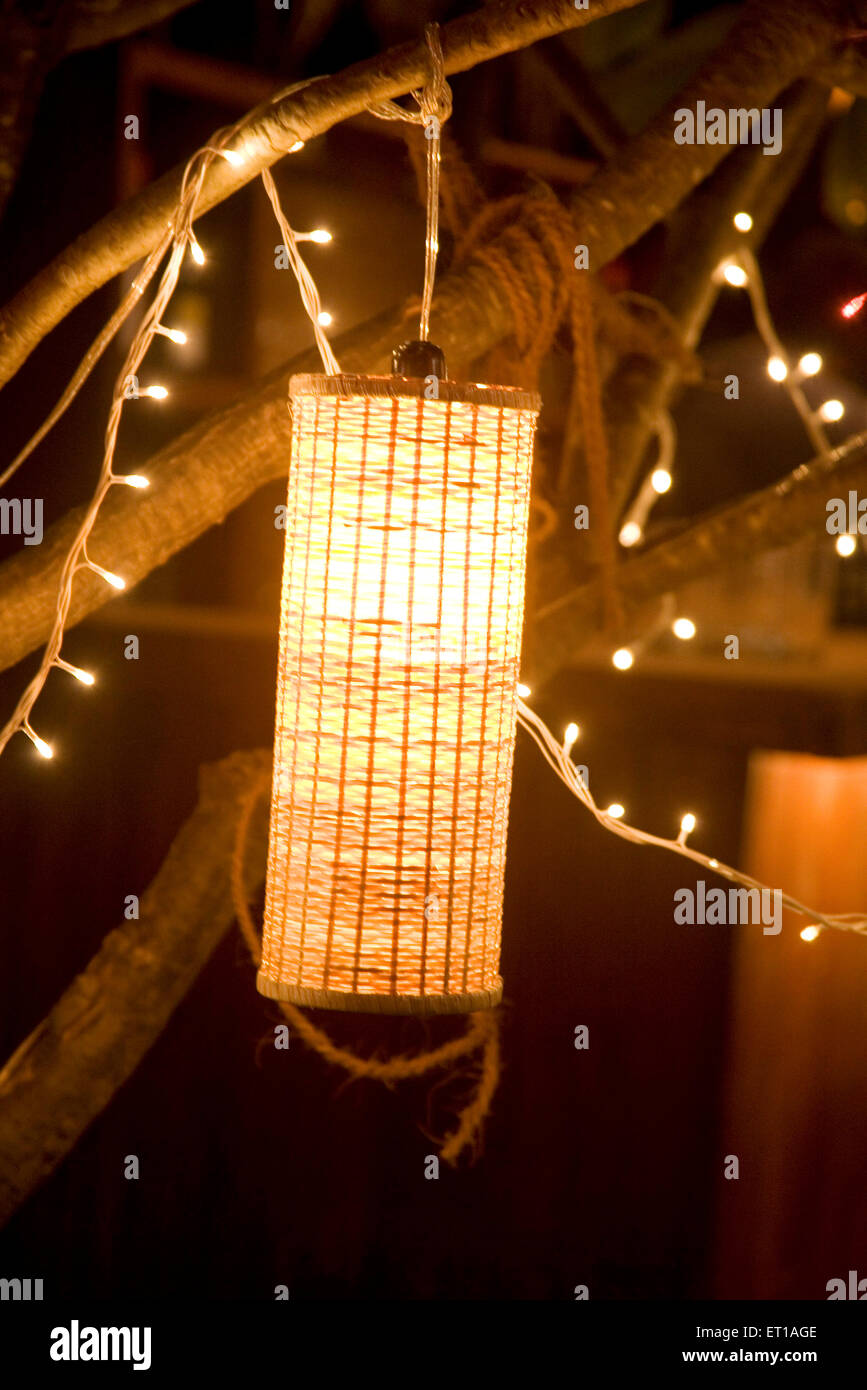 Artificial light lamp and small bulbs hanging from a tree light artificial light lamp and small bulbs hanging from a tree light decoration of the party palolem beach goa india arubaitofo Choice Image