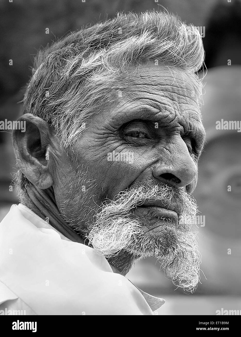 Long moustache of old man in serious mood ; Jodhpur ; Rajasthan ; India MR#746B - Stock Image