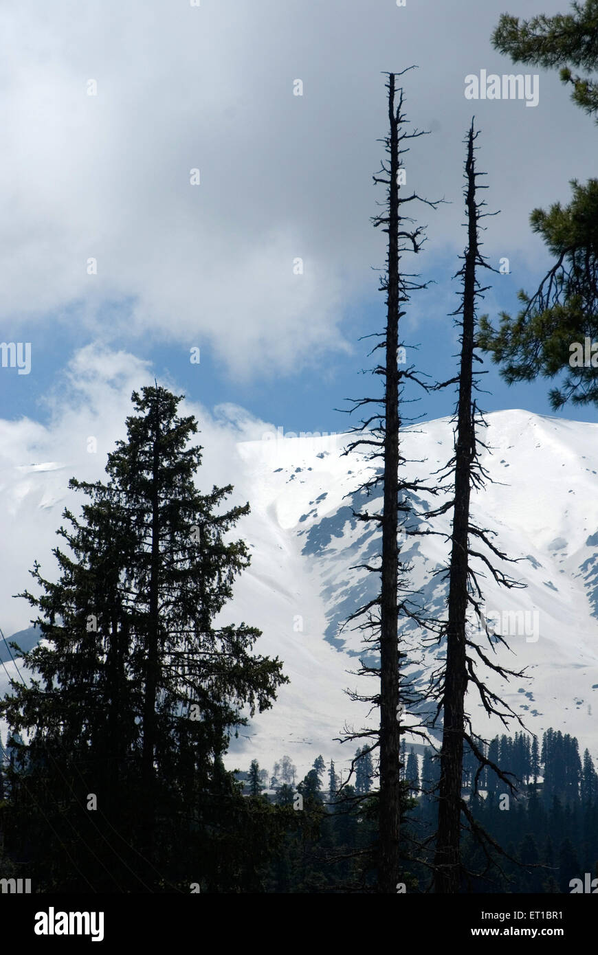 Snow clad mountains Gulmarg Jammu & Kashmir India Asia - Stock Image