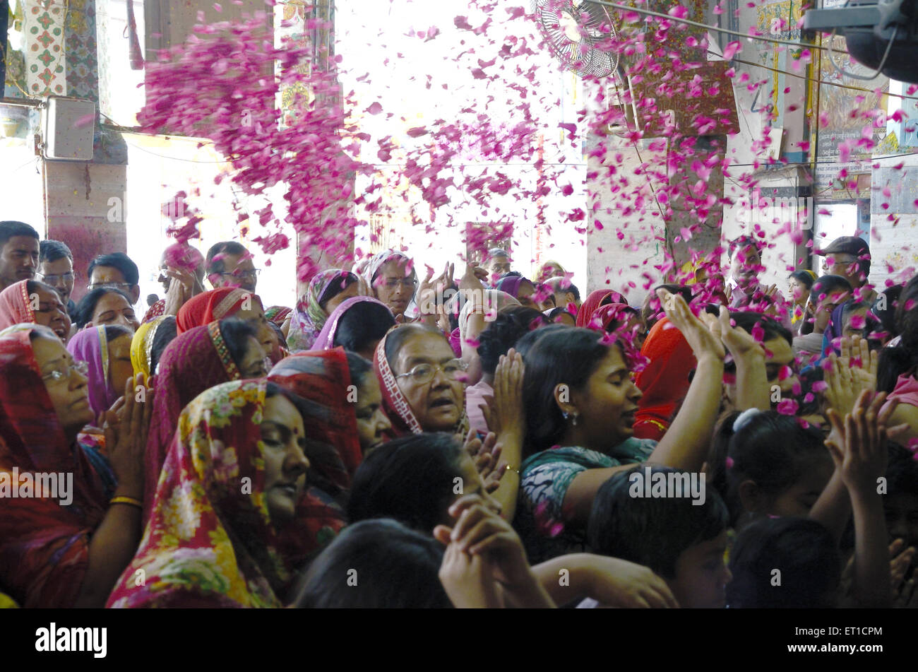 Women engrossed of Basantotsav occasion in Gang Shyamji temple at Rajasthan India - Stock Image