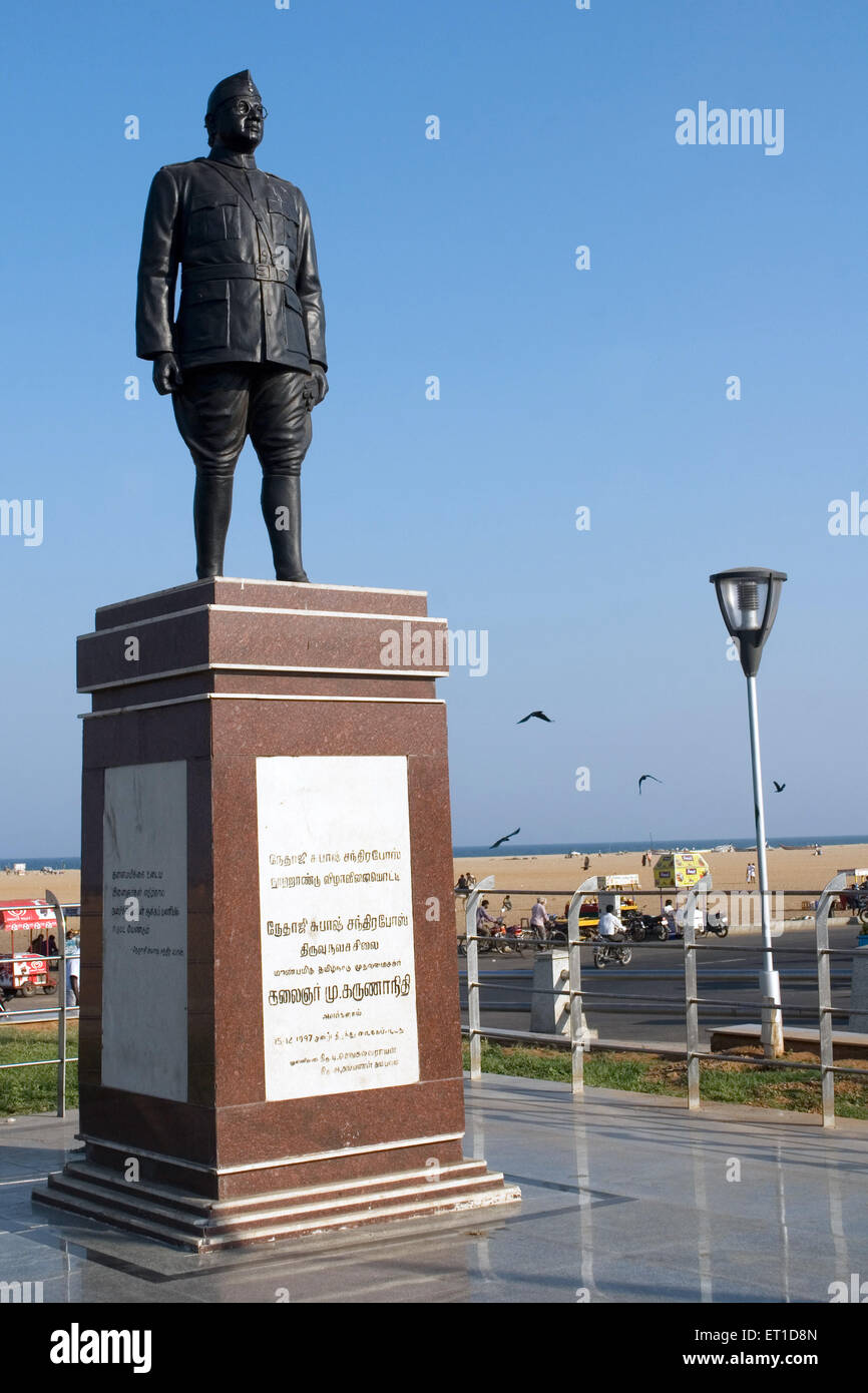 Statue of netaji subhash chandra bose at marina beach ; Chennai ; Tamil nadu ; India - Stock Image