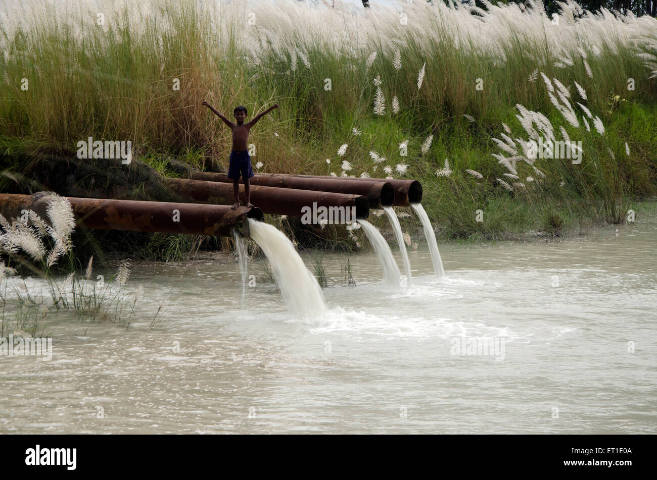 Boy standing on pipeline falling in pond Kolkata West Bengal India Asia - Stock Image