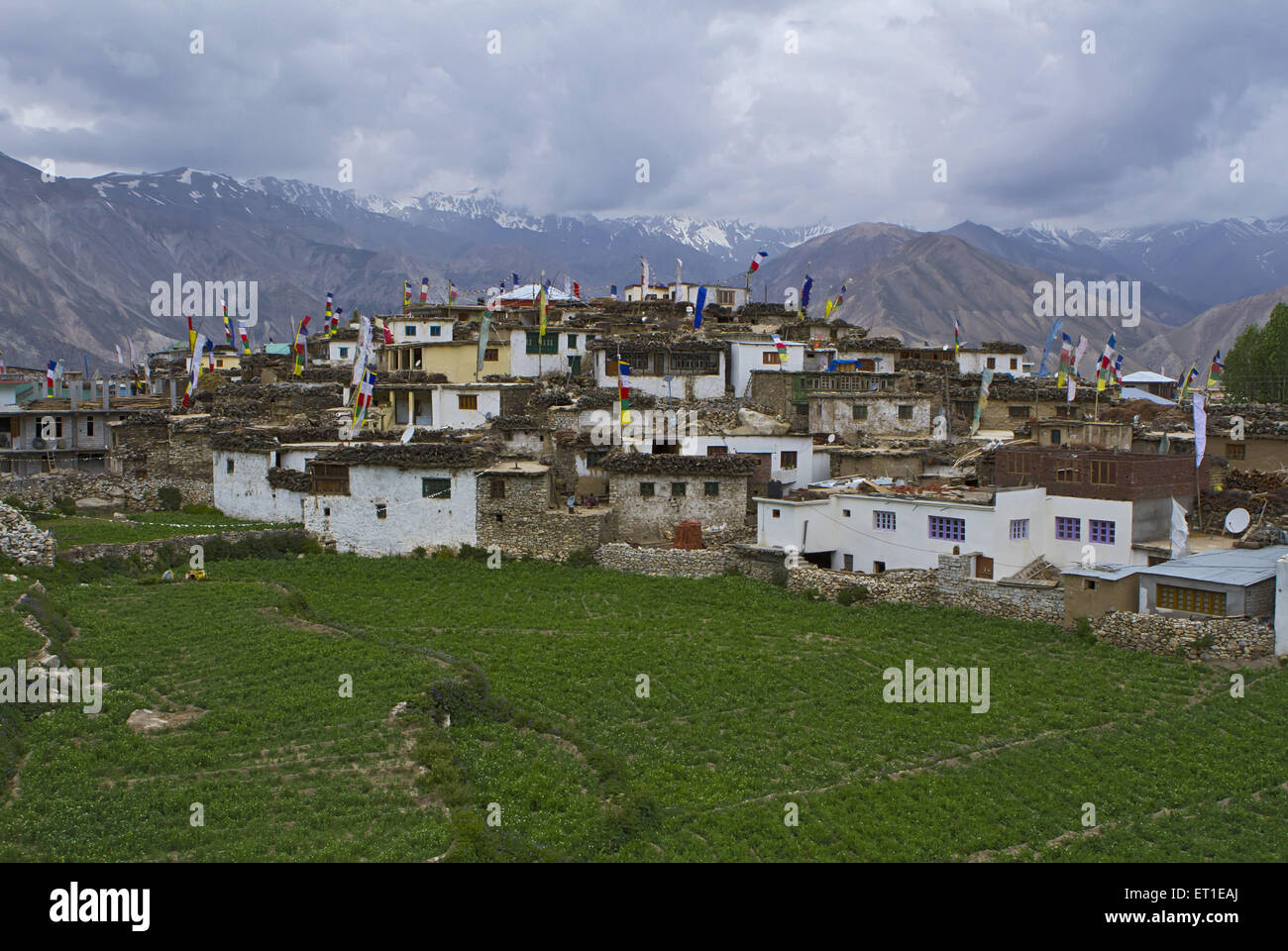nako village himachal pradesh India - Stock Image