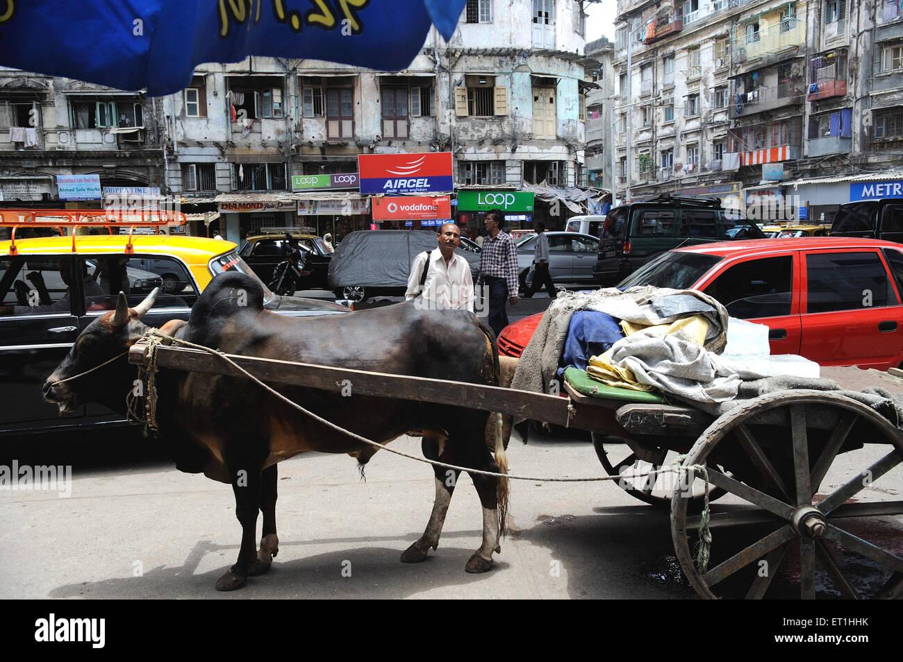 Bullock cart in busy street ; Bombay Mumbai ; Maharashtra ; India - Stock Image