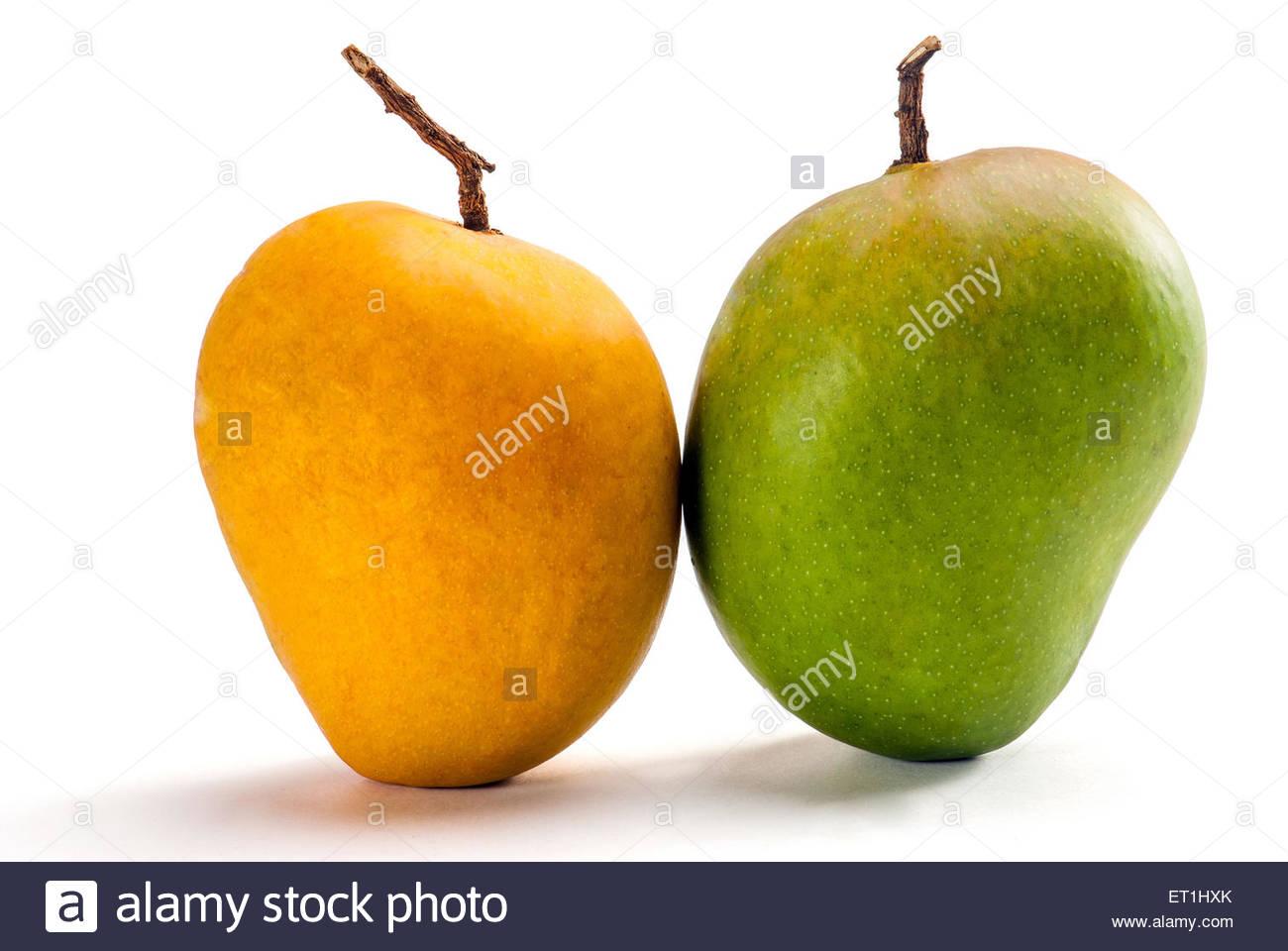 alphonso mango also hafoos hapuz or aapoos ET1HXK