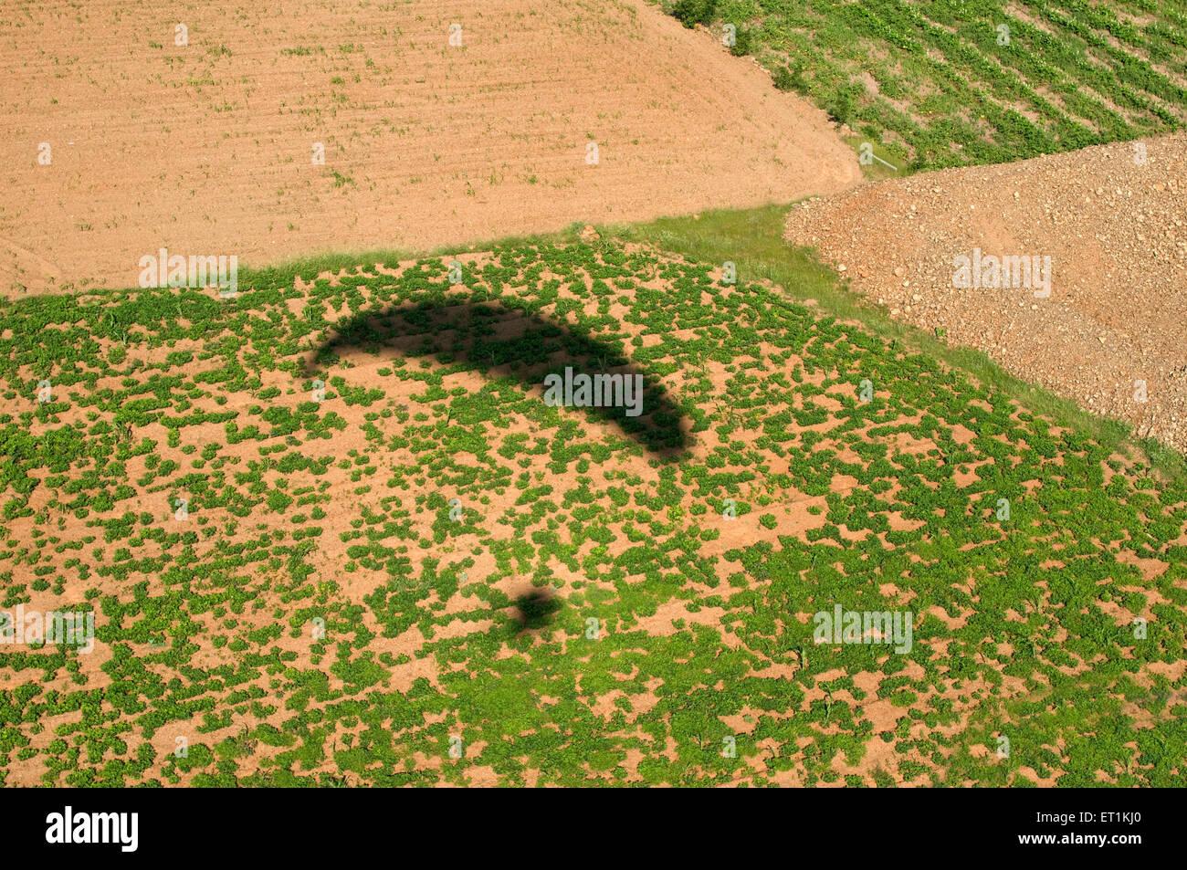 paramotor glider shadow on fields Pune Maharashtra India Asia - Stock Image