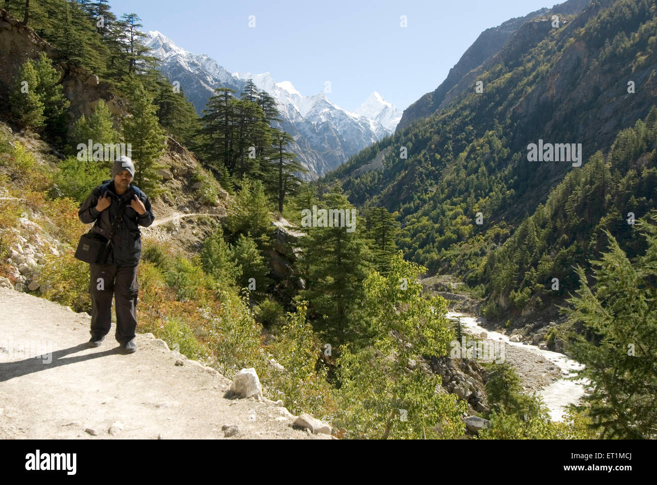 Trekker coming from gomukh of ganga river and Himalayan landscape ; Uttaranchal ; India - Stock Image