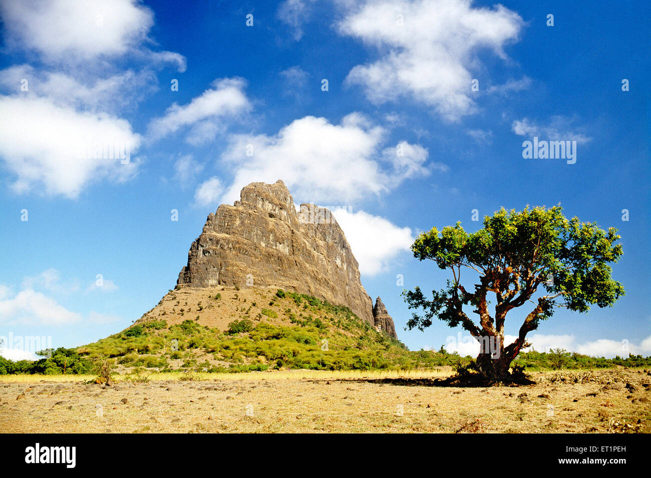 Agri search ind pvt ltd - Nasik (Nashik), India - Local ...