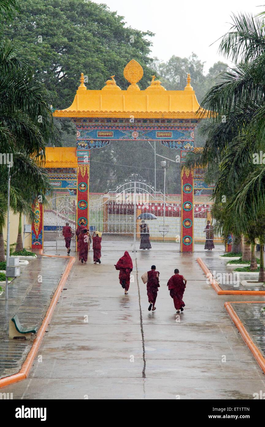 Buddhist Monk Escaping The Rain In Mundgod at Karnataka India Asia - Stock Image