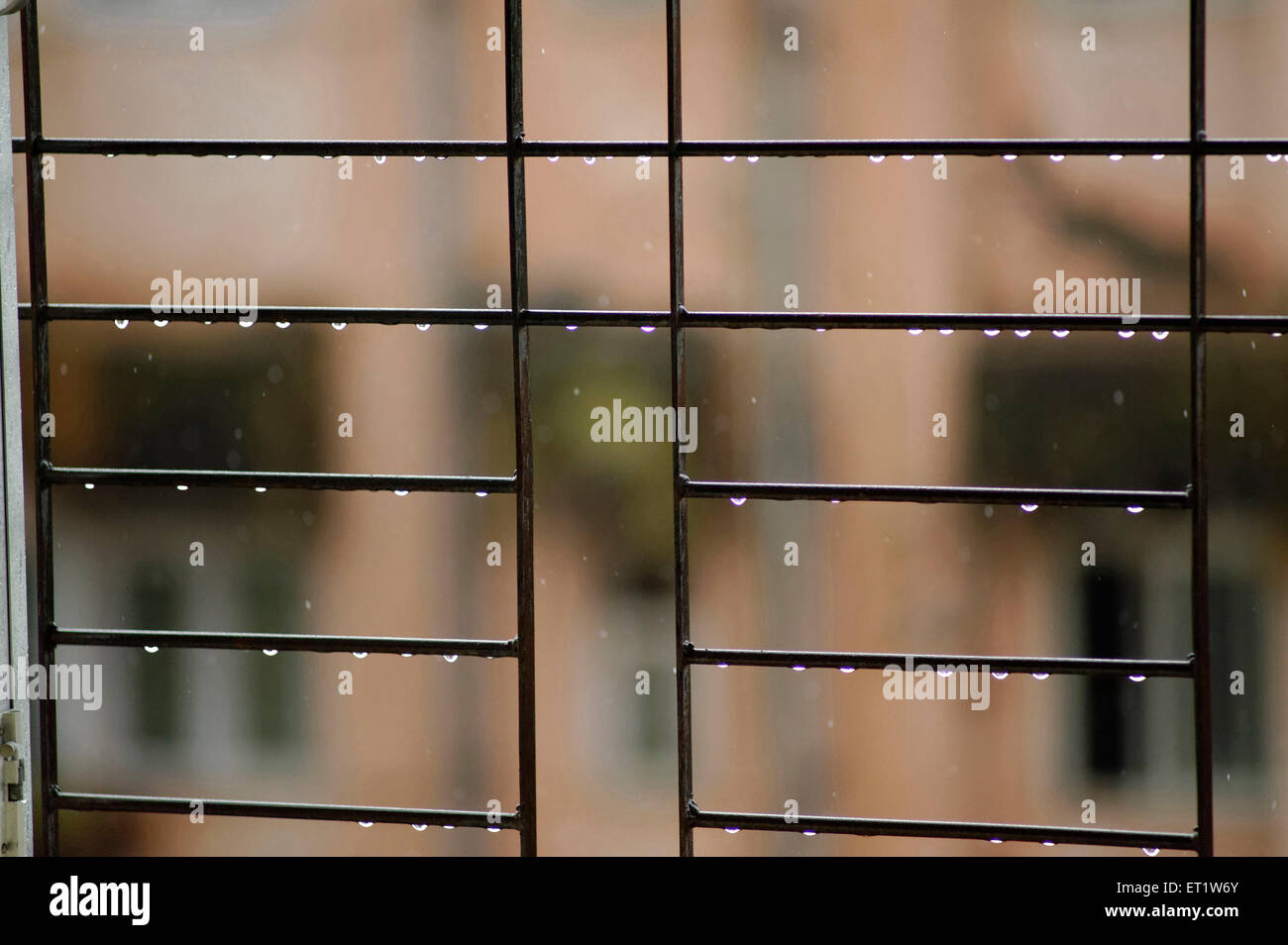window grill design for home in india