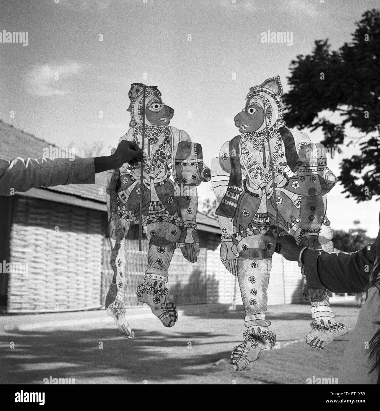 Displaying transparent painted leather puppets ; Shadow puppet plays entertainment ; Hallare village ; Mysore ; - Stock Image