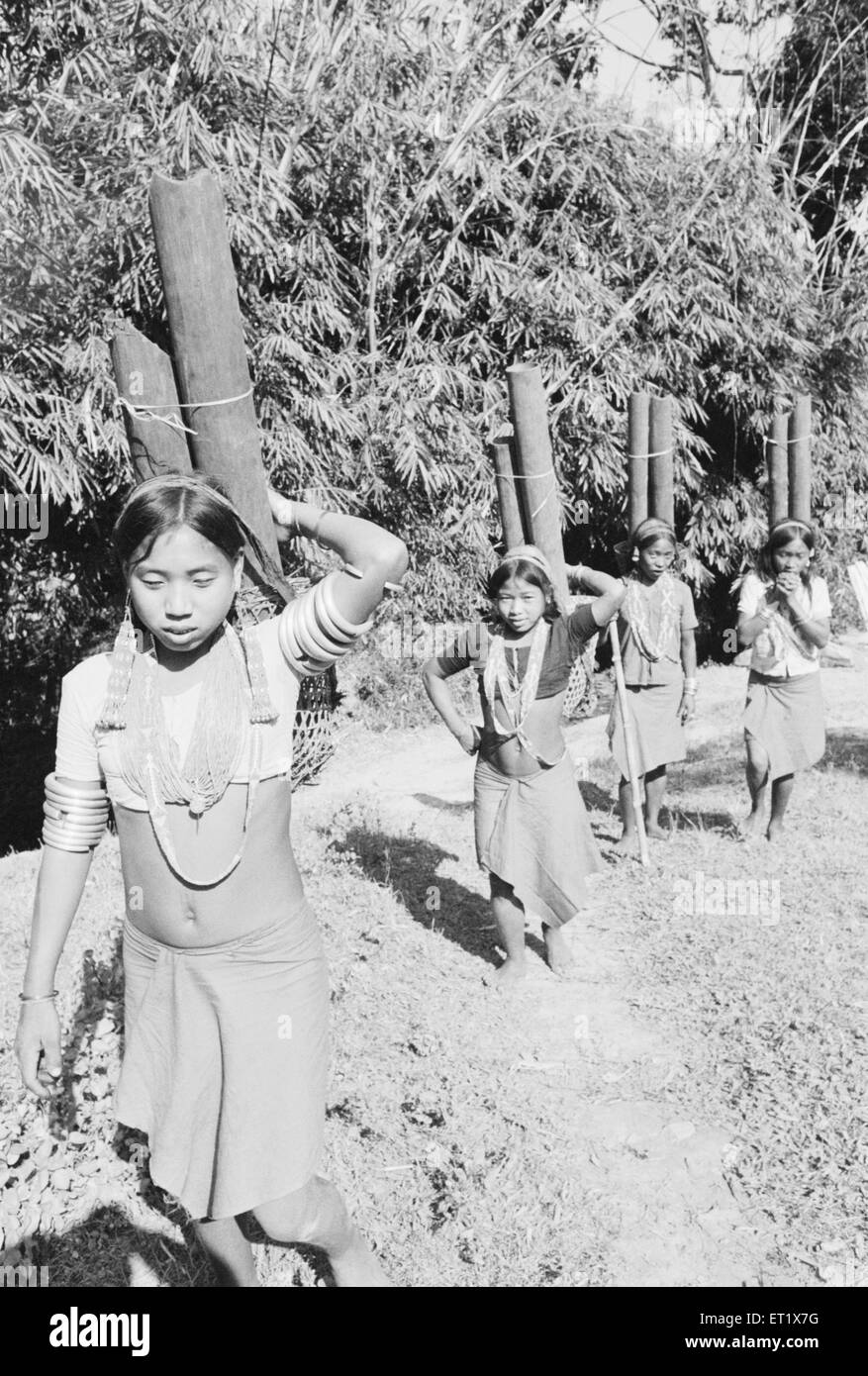 Members of Wancho tribe girls fetching water in bamboo pipes ; Tirap District ; Arunachal Pradesh ; India 1982  - Stock Image