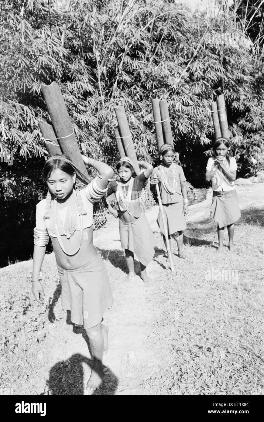 Wancho tribal girl fetching potable water in bamboo pipe 1982 ; Arunachal Pradesh ; India - Stock Image