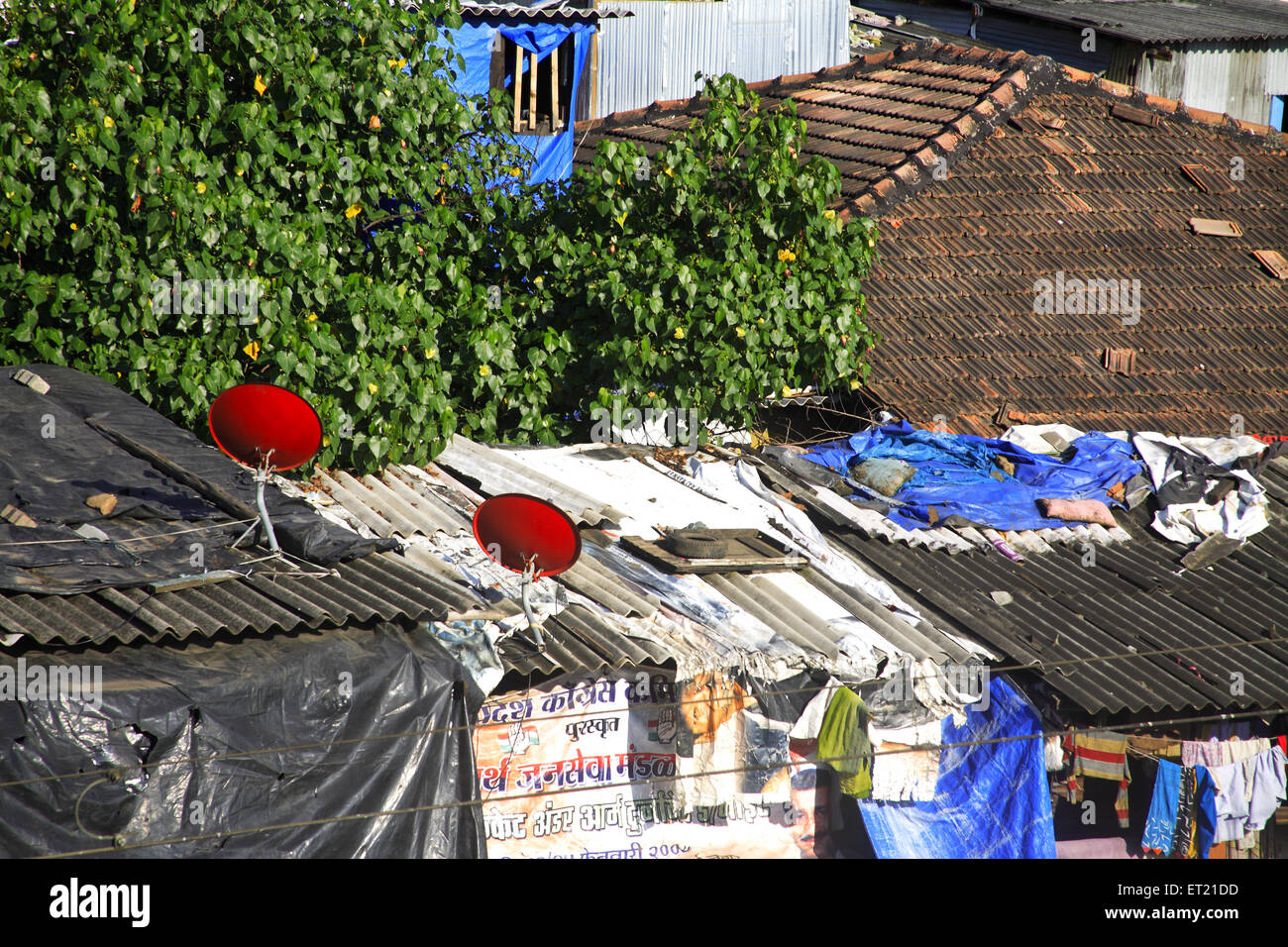 Dish antenna in slum ; Behram Naupada ; Anant Kanekar Marg ; Bandra ; Bombay Mumbai ; Maharashtra ; India 17 September - Stock Image