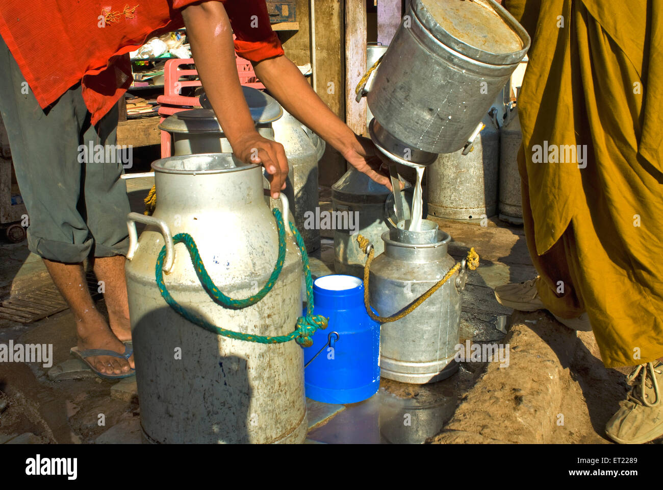 Milk pouring from one can to another aluminium cans in Mahesh Milk Dairy ; Bhuj ; Kutch ; Gujarat ; India - Stock Image